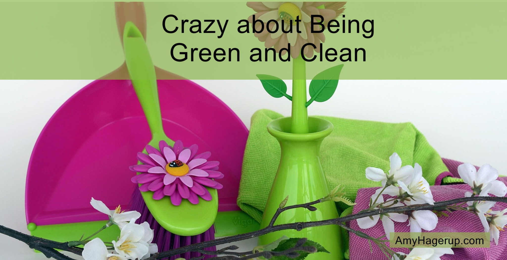 Get your home cleaned up with green cleaners. Go non-toxic all the way.