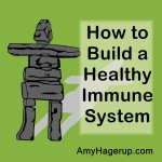 How to build a healthy immune system