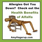 Health Benefits of Alfalfa