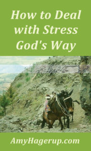 How to deal with stress as Christians.