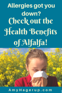 Check out the health benefits of alfalfa.